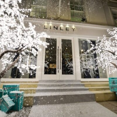 3m Grande Cherry Trees covered in snow outside Linley