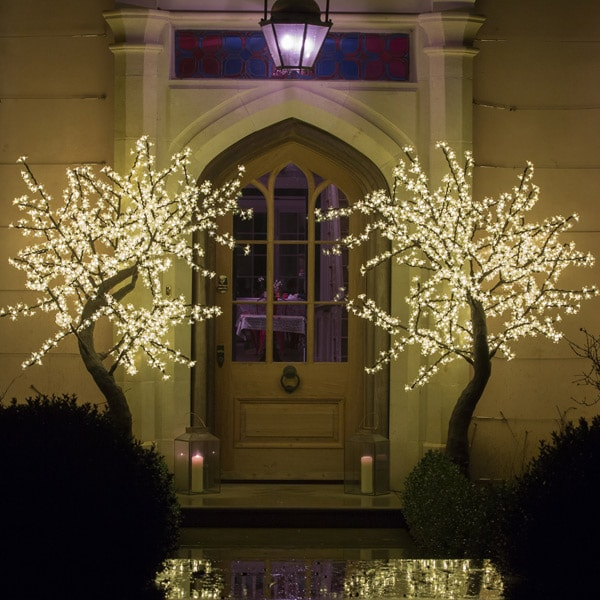 outdoor artificial trees with lights