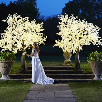Bride about to throw bouquet, standing infront of 2 x 3m Grande white maple trees