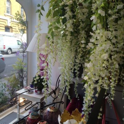 Wisteria poms in the window of Nina Campbell for Chelsea in Bloom