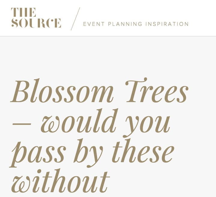 The Source website featured our new blossom trees