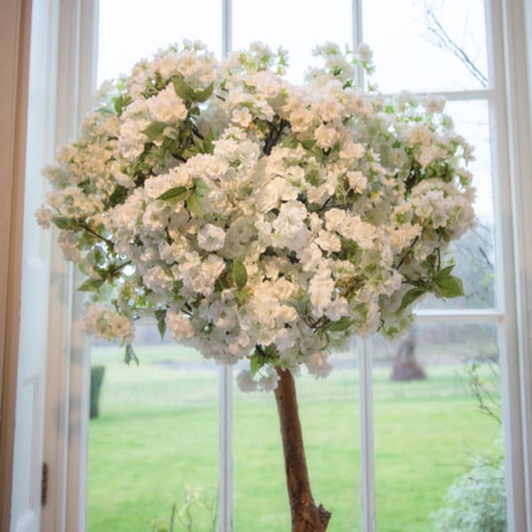 White Blossom Pom Tree available to hire