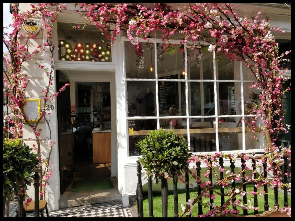 Daisy Green Cafe with Cherry Blossom