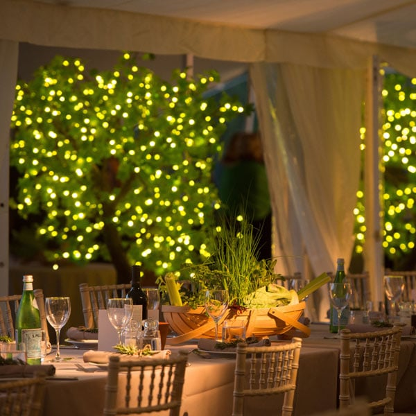 Hire 2m LED maple trees with green leaves by Twilight Trees
