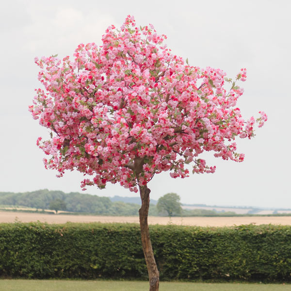 Hire pink apple blossom tree by Twilight Trees