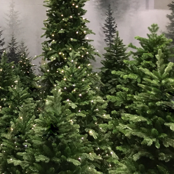 LED Christmas trees to hire by Twilight Trees