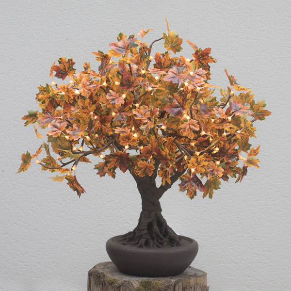 Hire autumnal bonsai LED maple trees by Twilight Trees