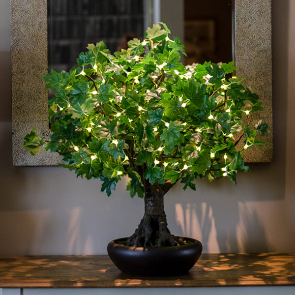 Hire green bonsai LED maple trees by Twilight Trees