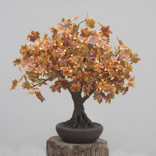 Autumnal Bonsai LED Maple Tree
