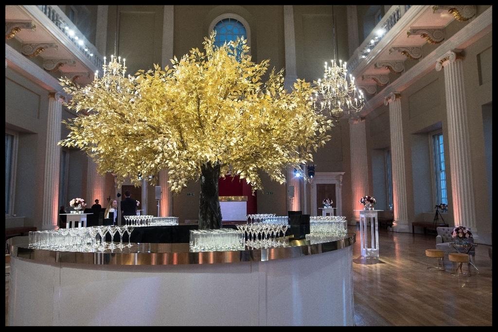 Twilight Trees' Golden Delicious at Bridelux Symposium party
