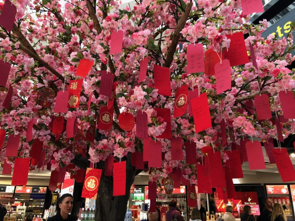 Pink blossom trees filled with wishes