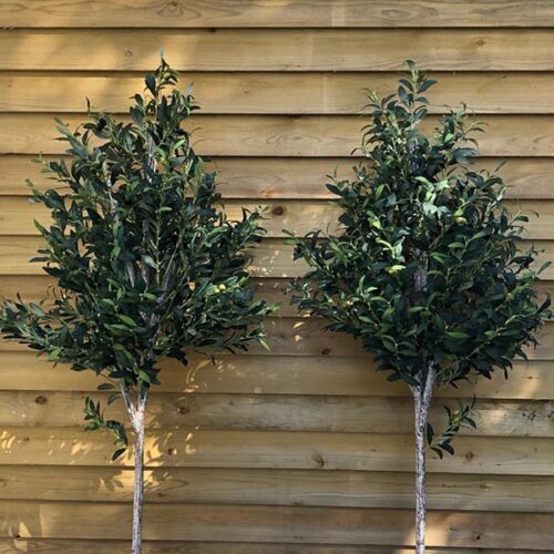 Medium Faux Olive Trees