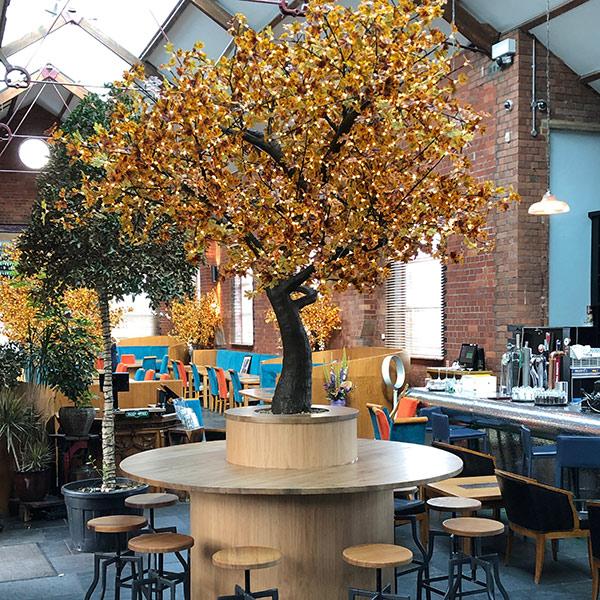 autumn-maple-tree-styling