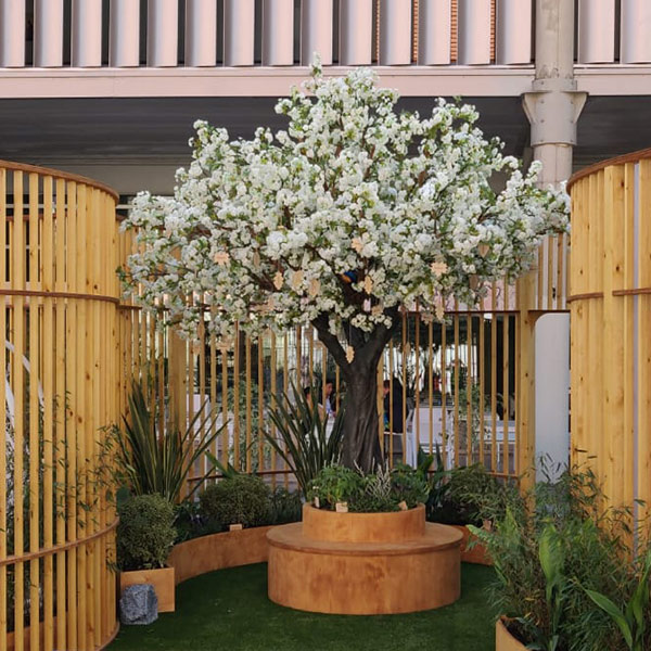 white-blossom-tree-styling-borders