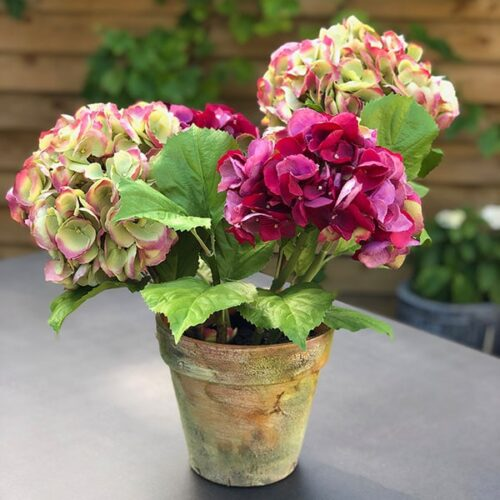 Faux hydrangea flowers in a terracotta pot by Twilight Tress