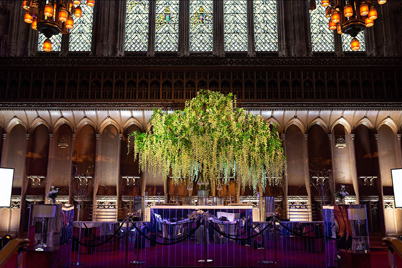 Wisteria Trees at the Guildhall